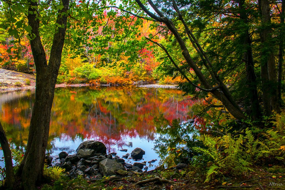Fall reflections by novab