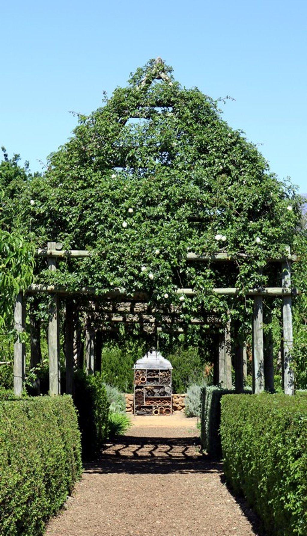 The Rose Arch by ninaganci