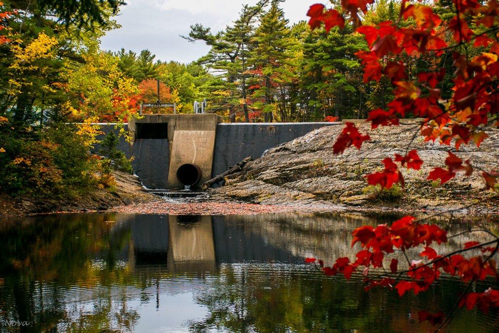 Autumn in Nova Scotia by novab
