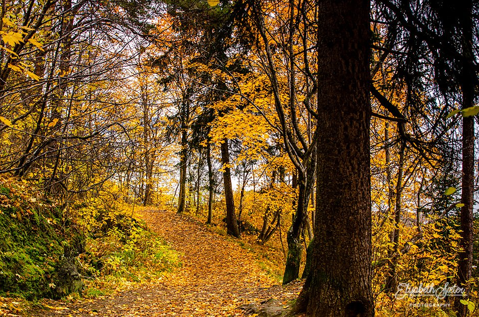 Autumn at the trail by elisasaeter