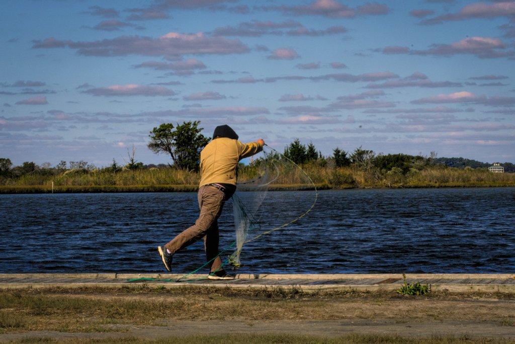 Net Fishing by joansmor
