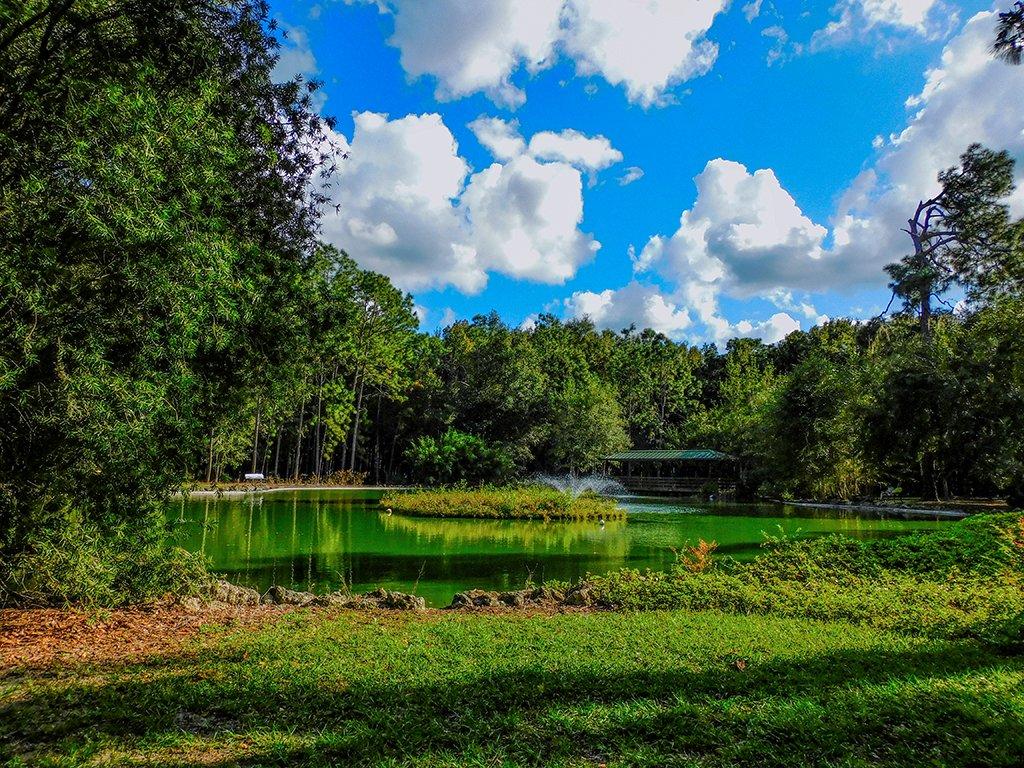 Sholom Park by photographycrazy
