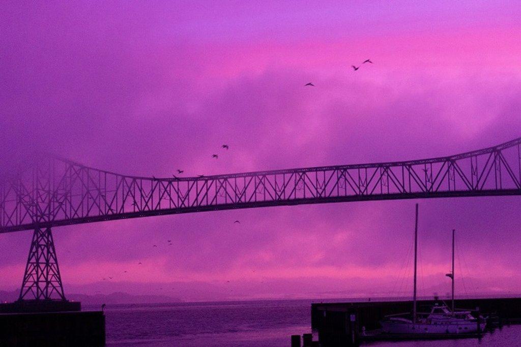 Bridge with Gulls by granagringa