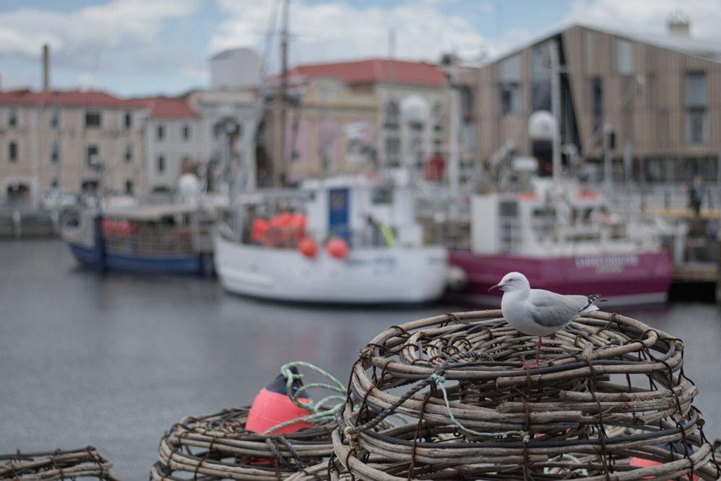 Hobart Wharf, Hobart, Tasmania  by kgolab