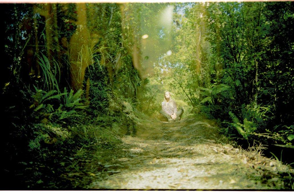 Spirits of the forest by domenicododaro
