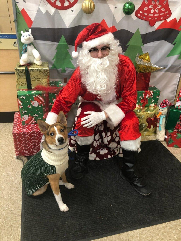 Visiting Santa by morrij10