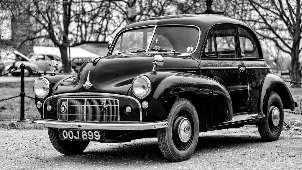 Moggy Minor by rjb71