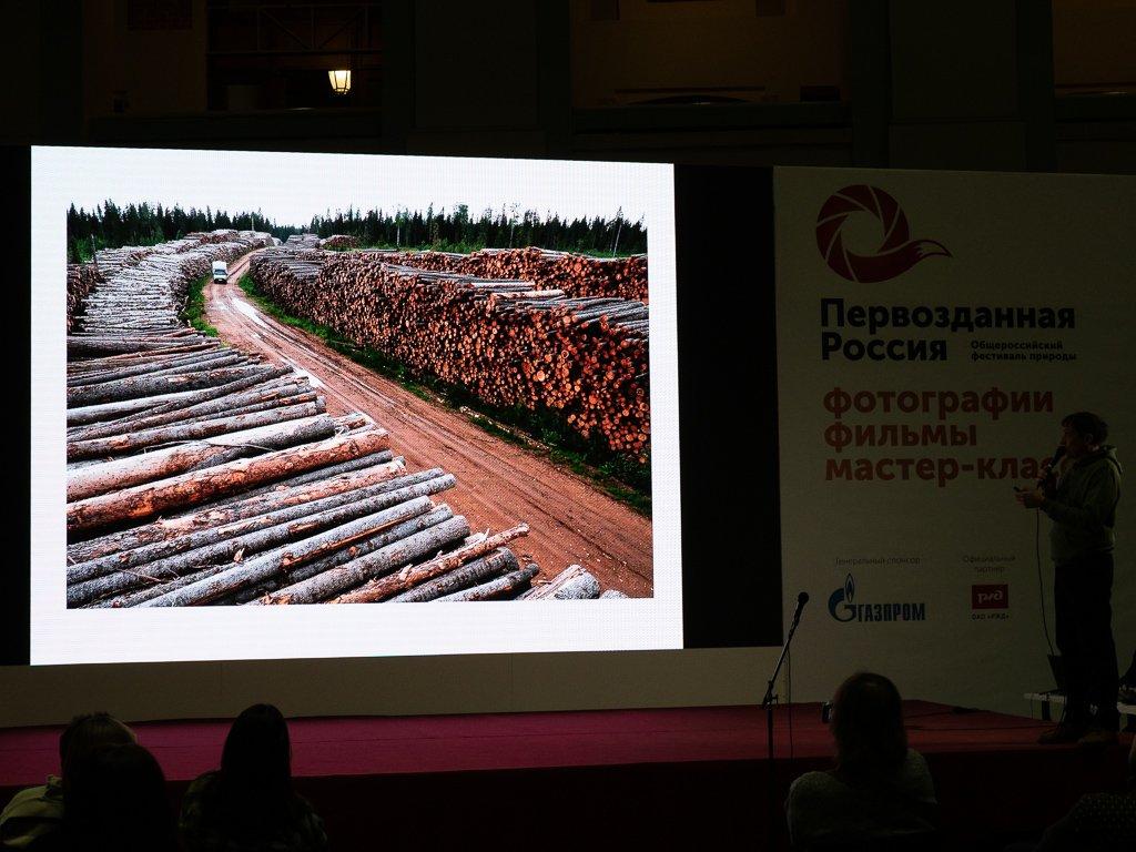 Deforestation by phmlq