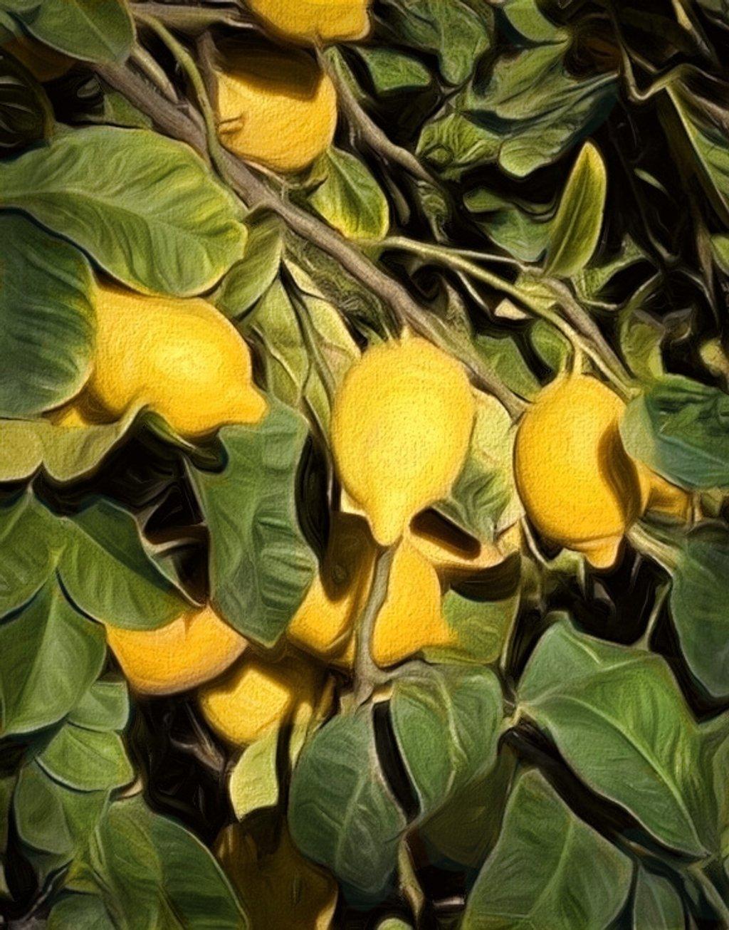 Lemon Tree by joysfocus
