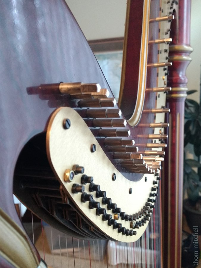 Harp, detail by rhoing