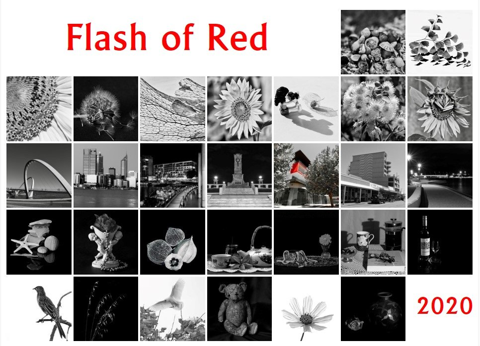 Flash of Red 2020 by merrelyn
