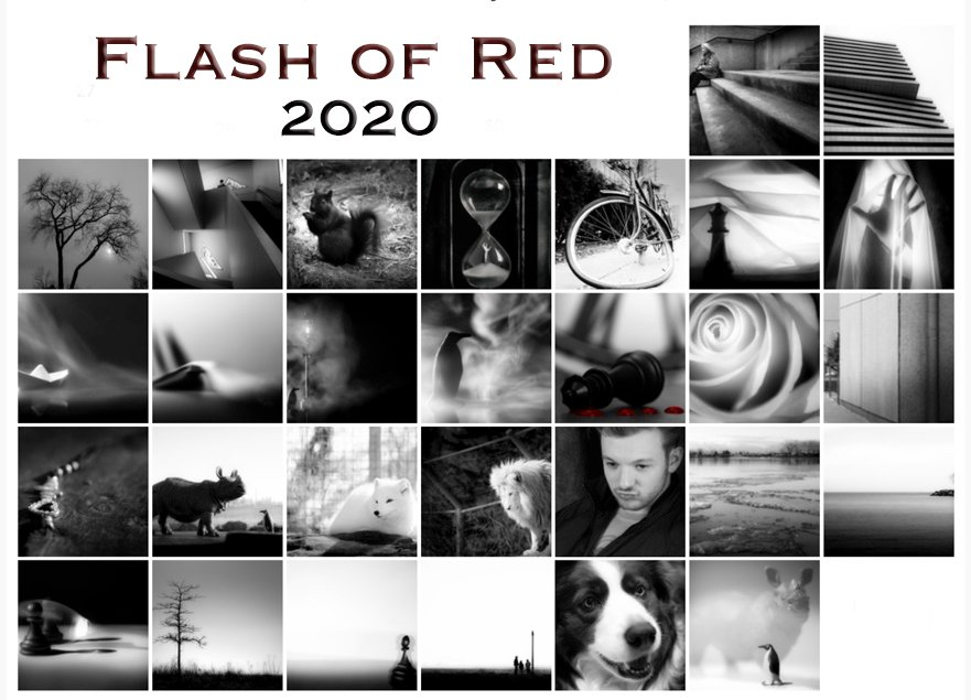 flash of red 2020 by northy