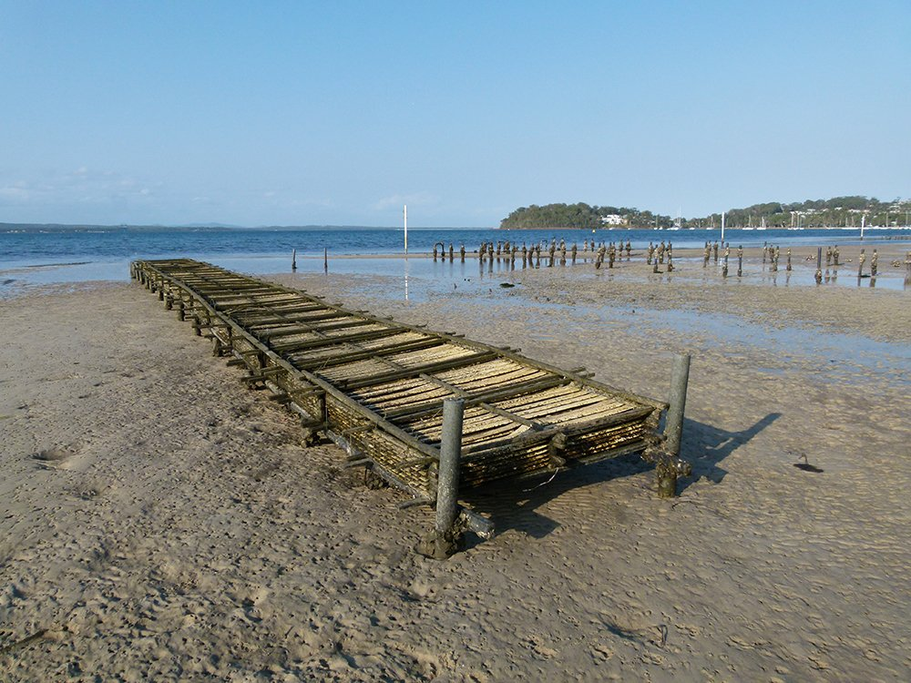 Deceased Oyster Beds by onewing