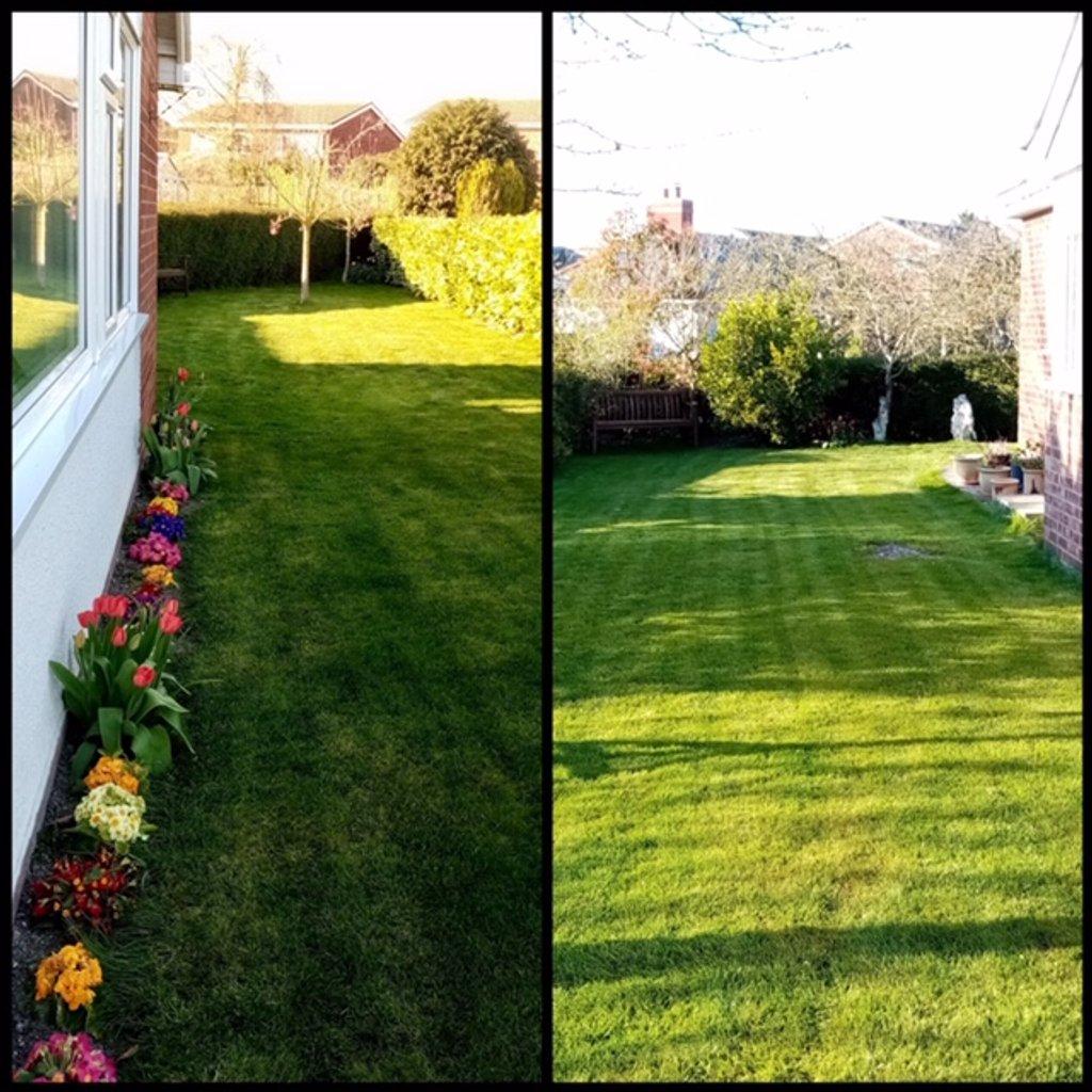 Our Garden by g3xbm