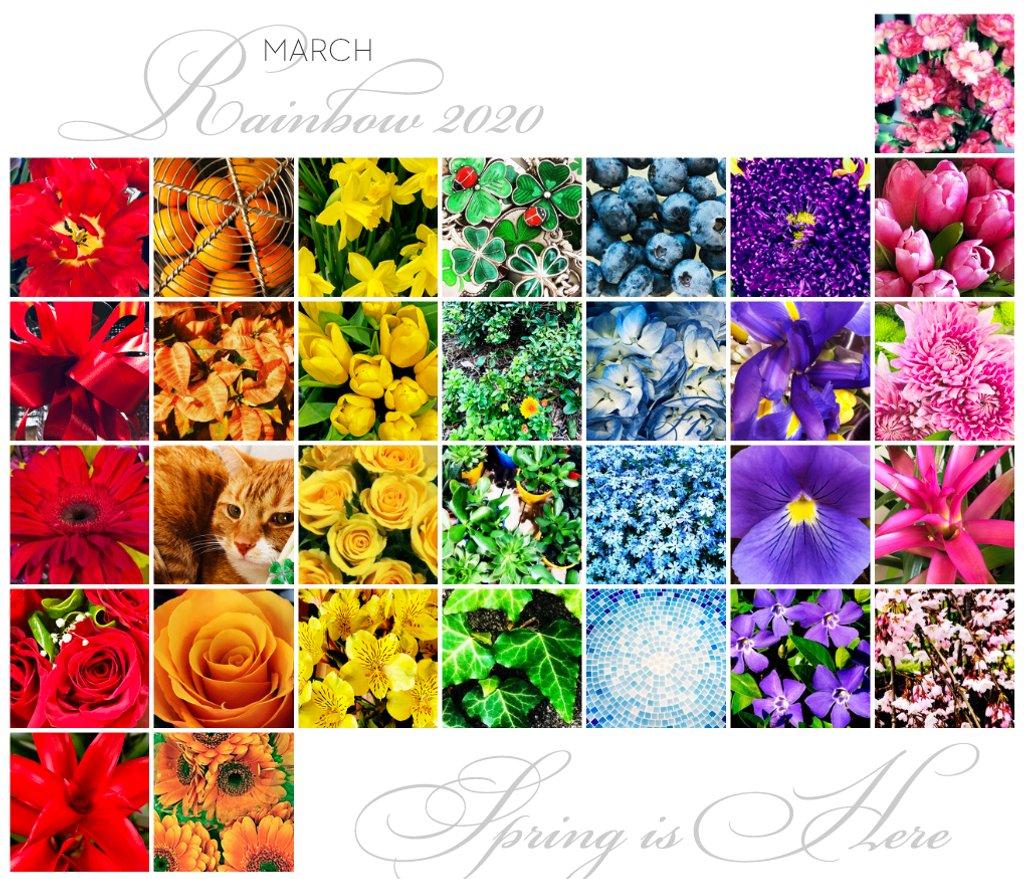 Rainbow   March 2020 by yogiw