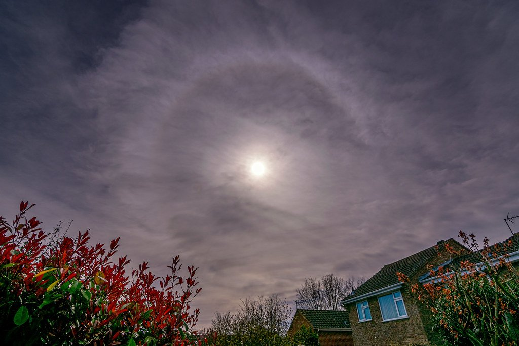 Back garden sun halo by rjb71