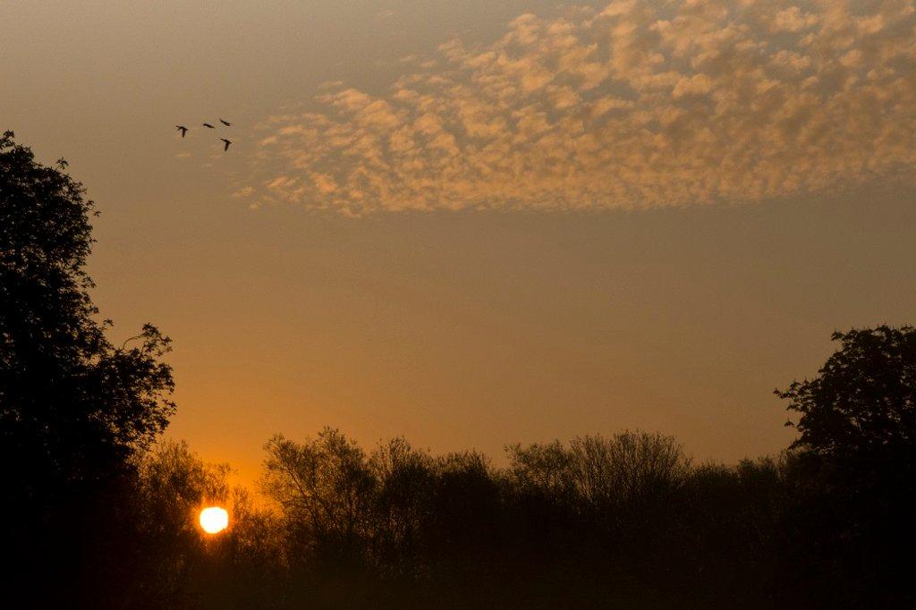 28, Easter morning Sunrise by helenhall