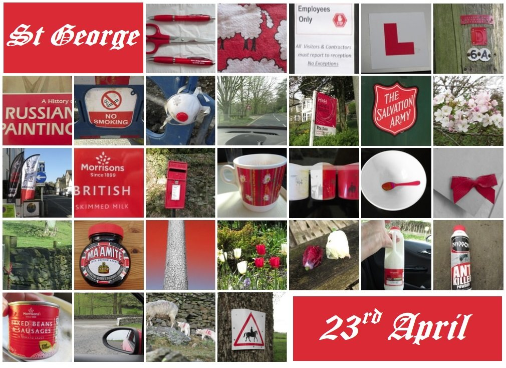 St George month shot by anniesue
