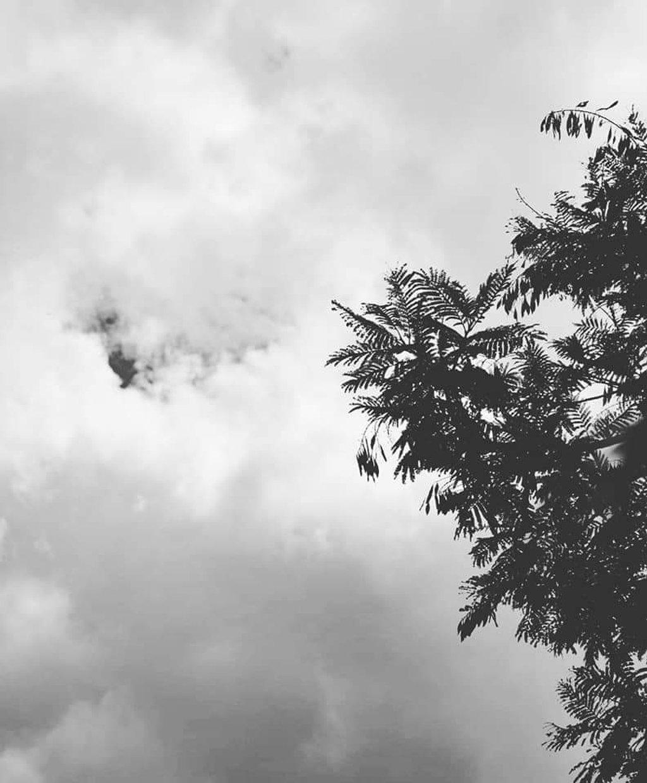 Gloomy day by motherxmind
