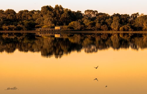 The Bird Hide on the Lake by glendamg