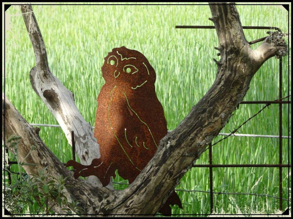 owl by gijsje