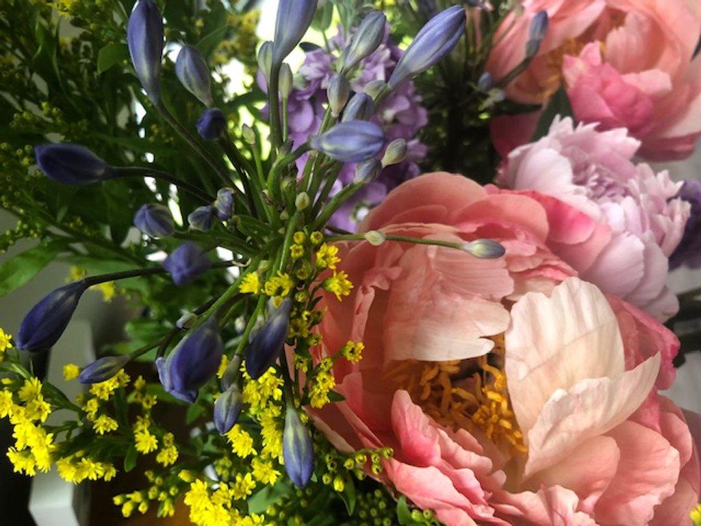 Flowers by nicolaeastwood