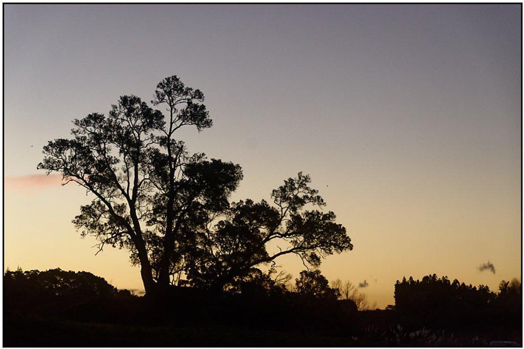 Sunset, Te Puna by chikadnz