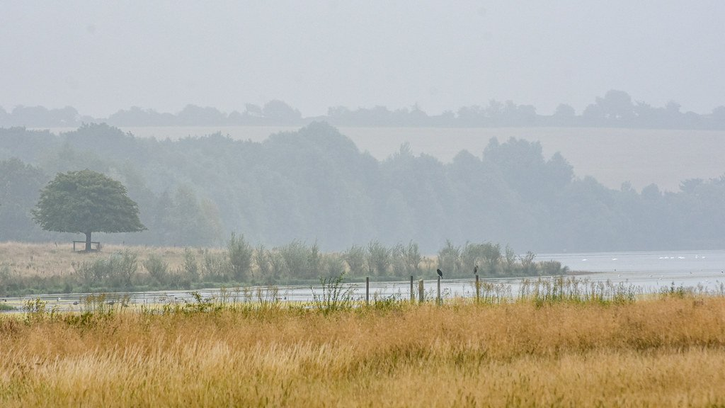 The Humidity!  by rjb71
