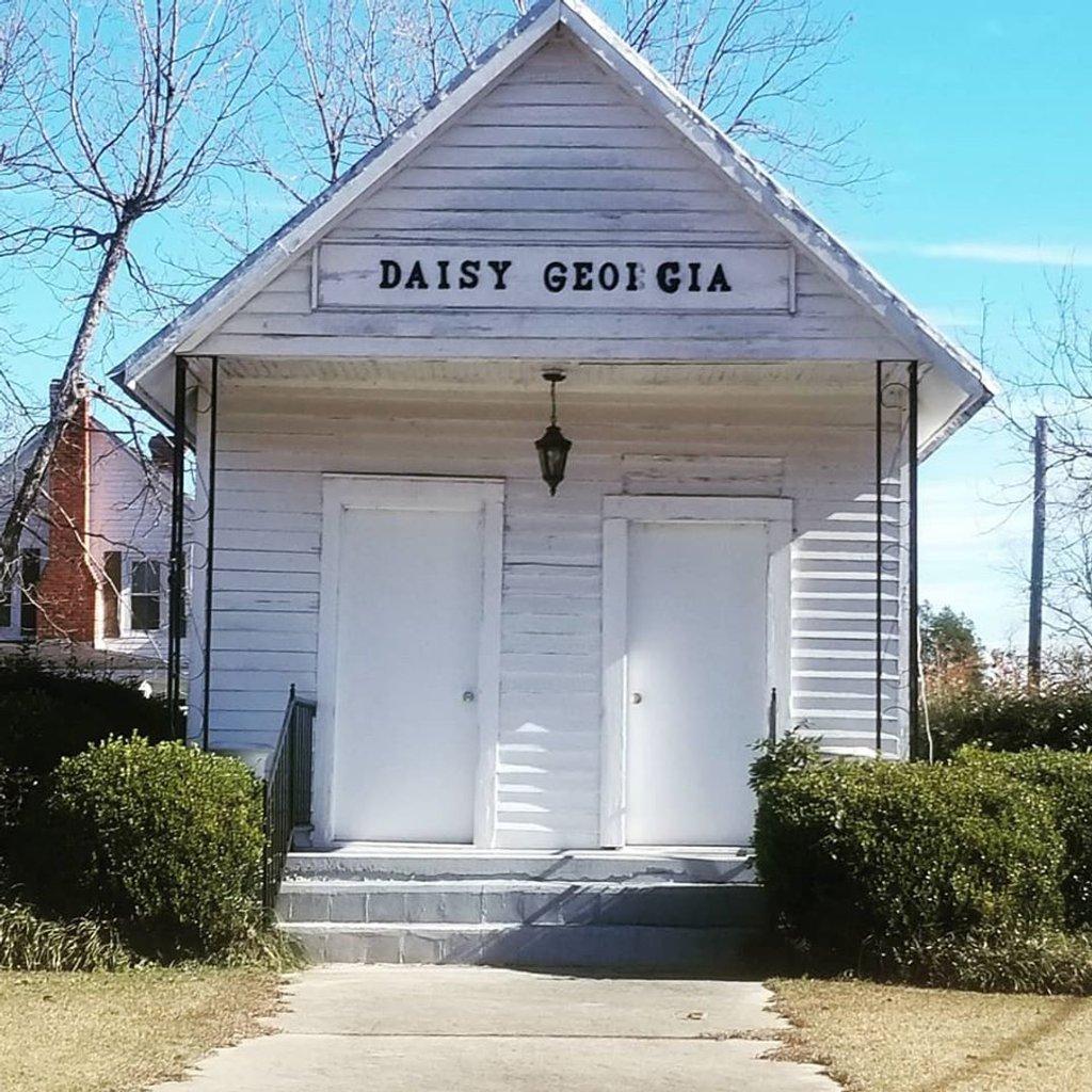 Daisy Georgia  by jillbrowning