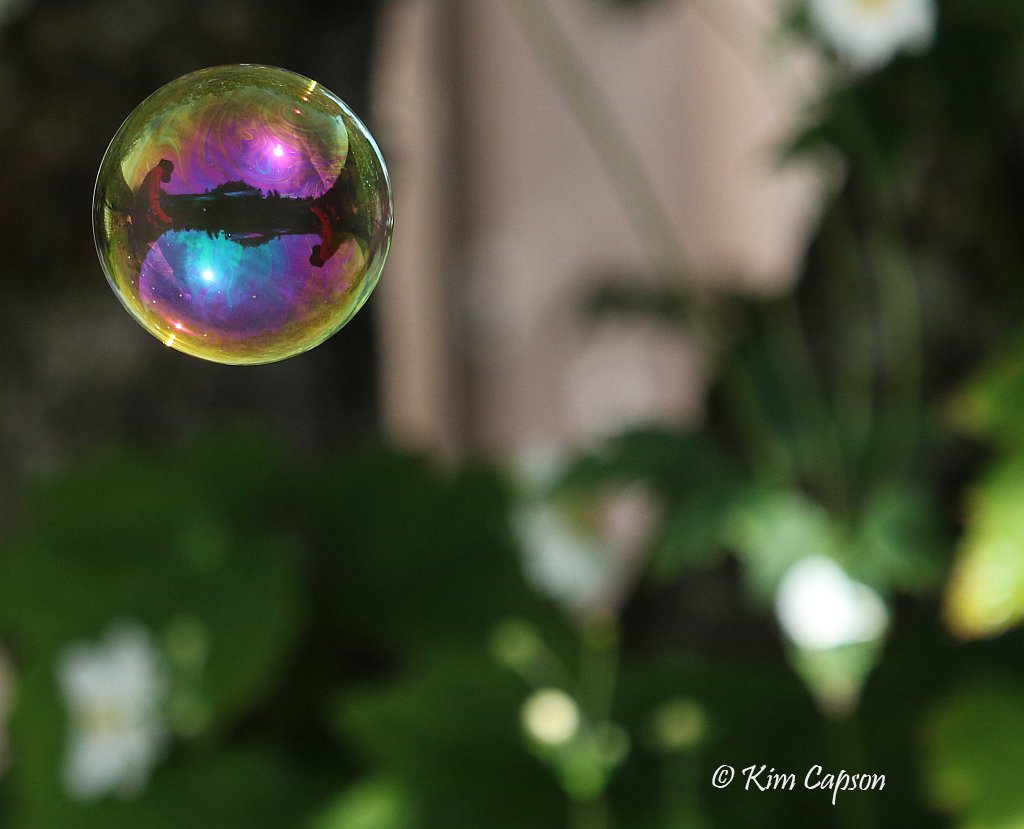 Floating Rainbow by kimmer50