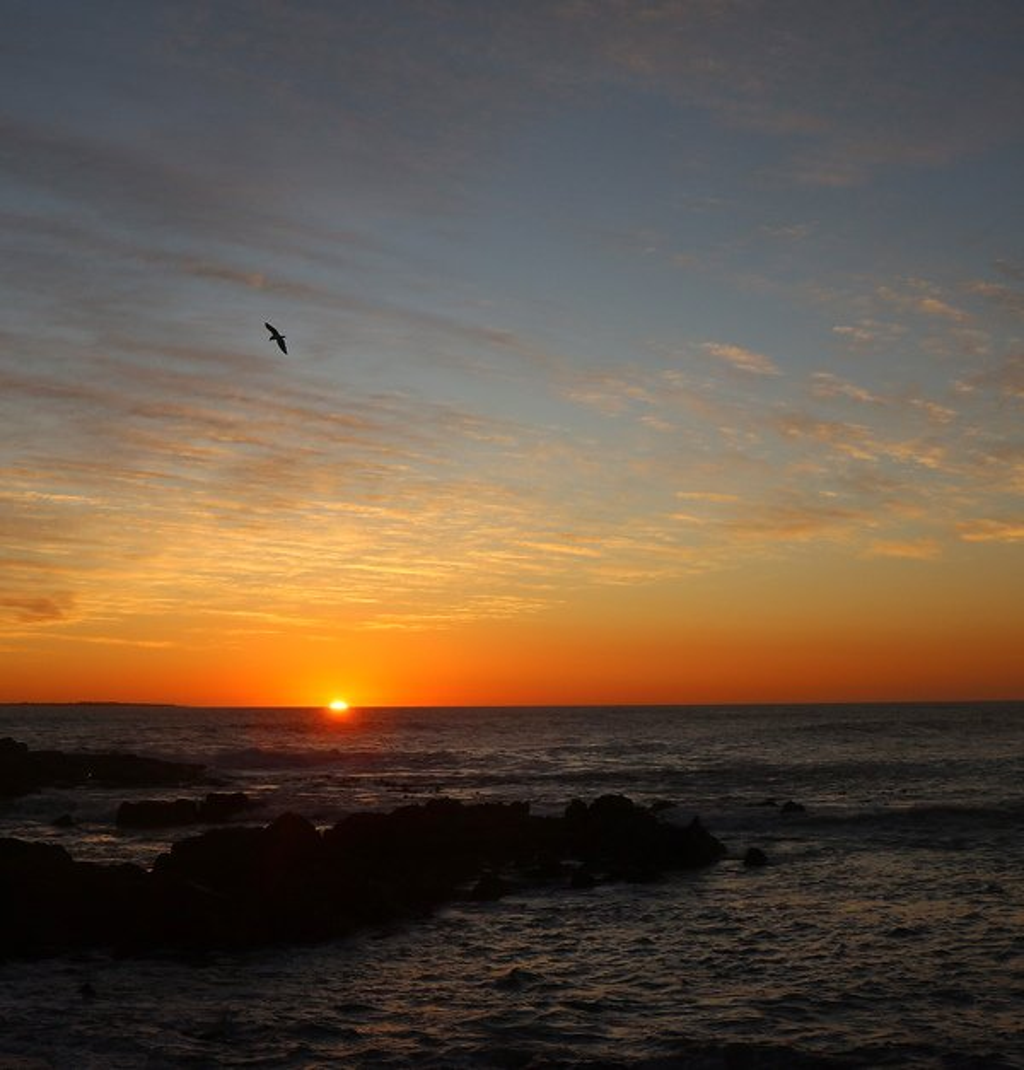 Sun Going Down by ninaganci