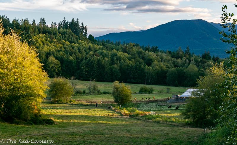 Pastoral near sunset  by theredcamera