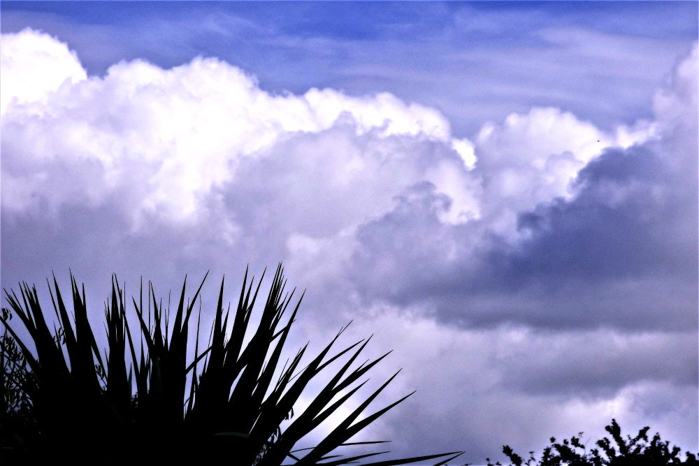 Clouds by beryl