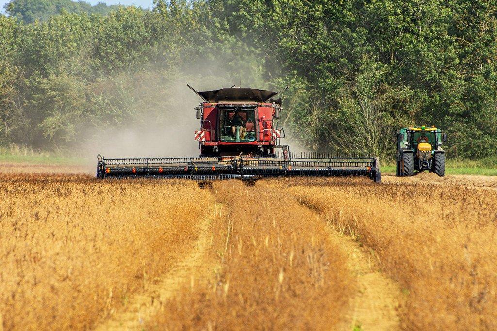 Combine Harvester  by rjb71