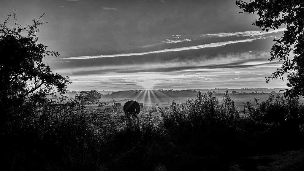 Black and white bales by rjb71