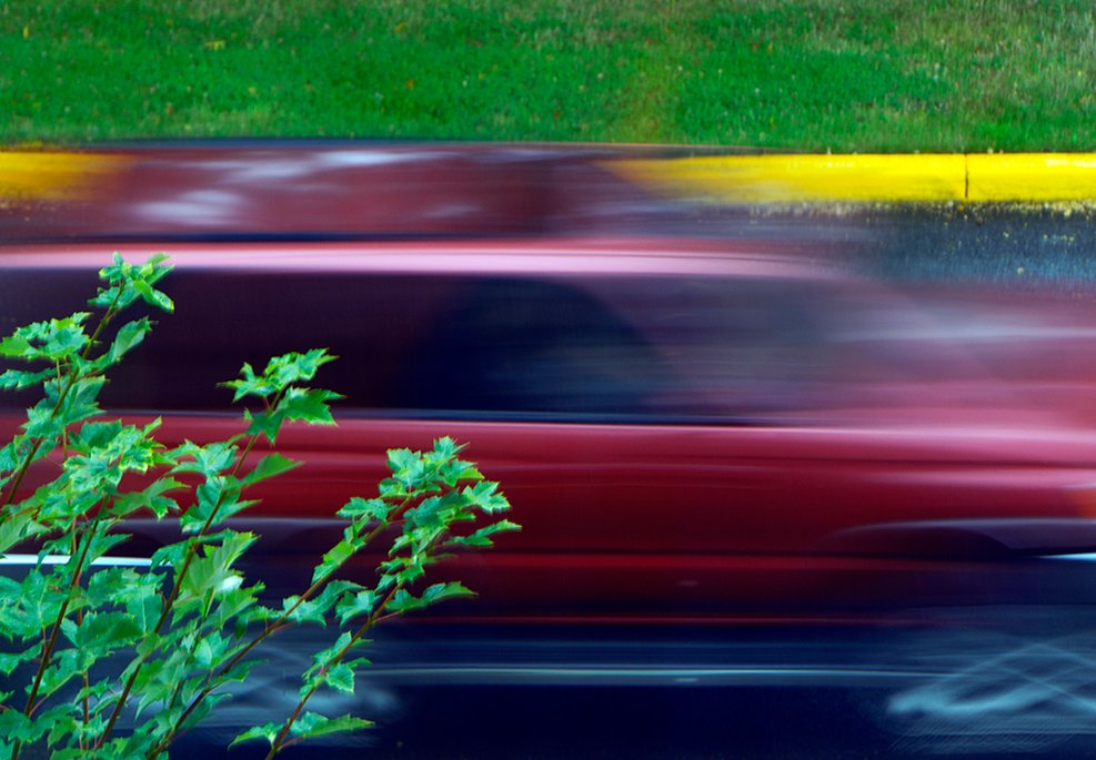 Red in Motion by granagringa