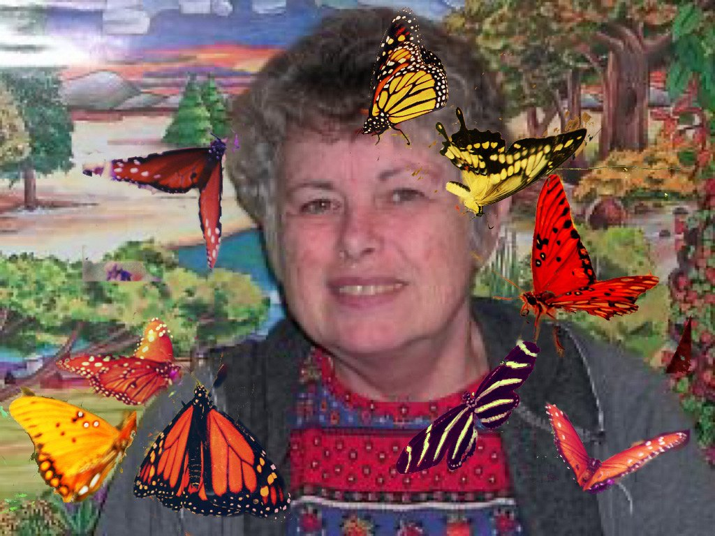 Kathy and her butterflies  by kathyboyles