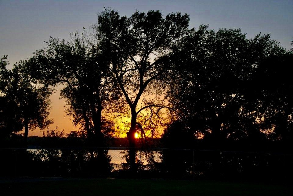 Sunset on White Rock Lake by louannwarren