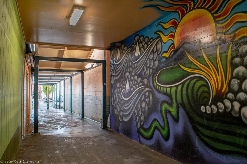 Nice Graffiti, A Wall Mural  by theredcamera