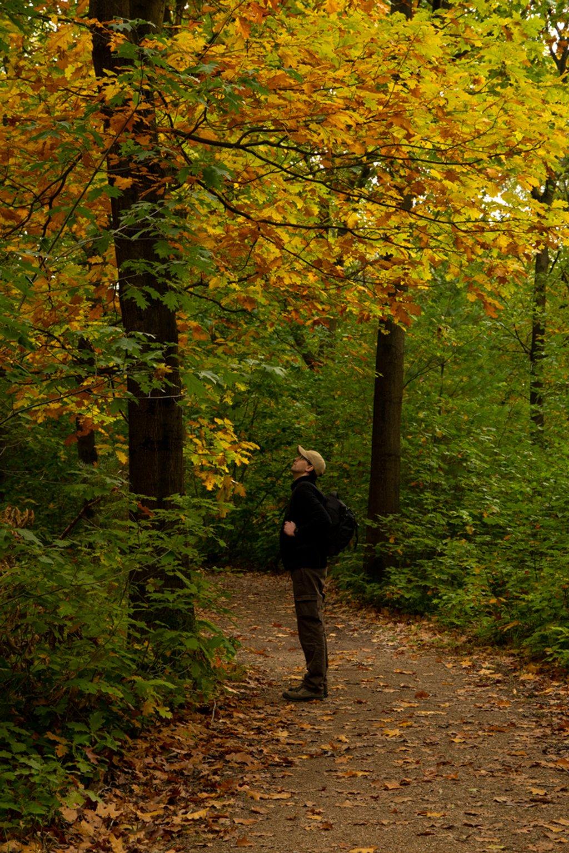 Enjoying Autumn by leonbuys83