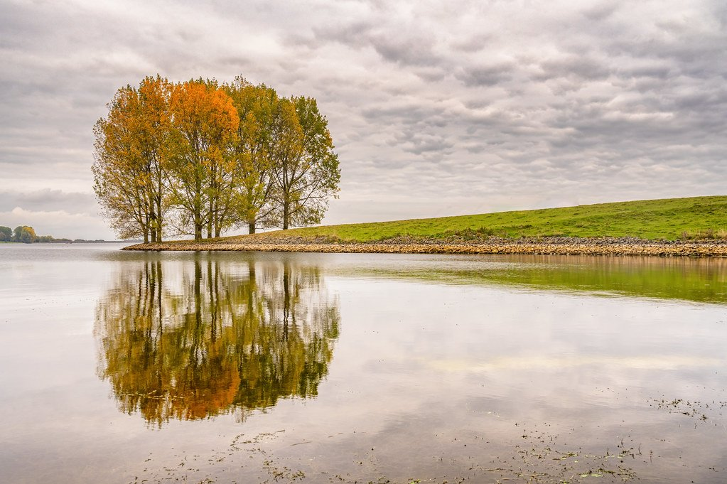 Autumnal Reflections  by rjb71