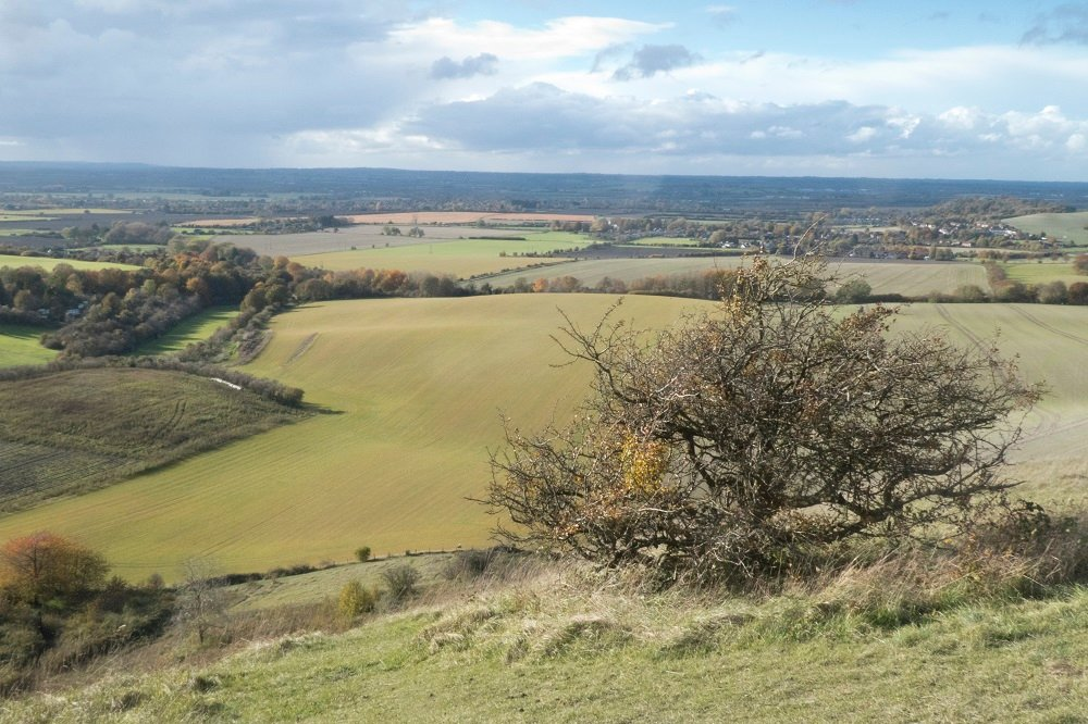 Dunstable downs by helenhall