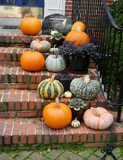 "A ""Gourd-Jus"" Display by allie912"
