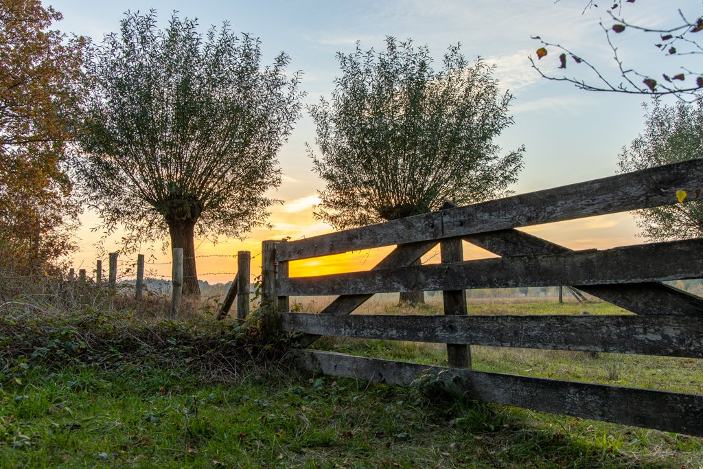 Fence at sunset by leonbuys83