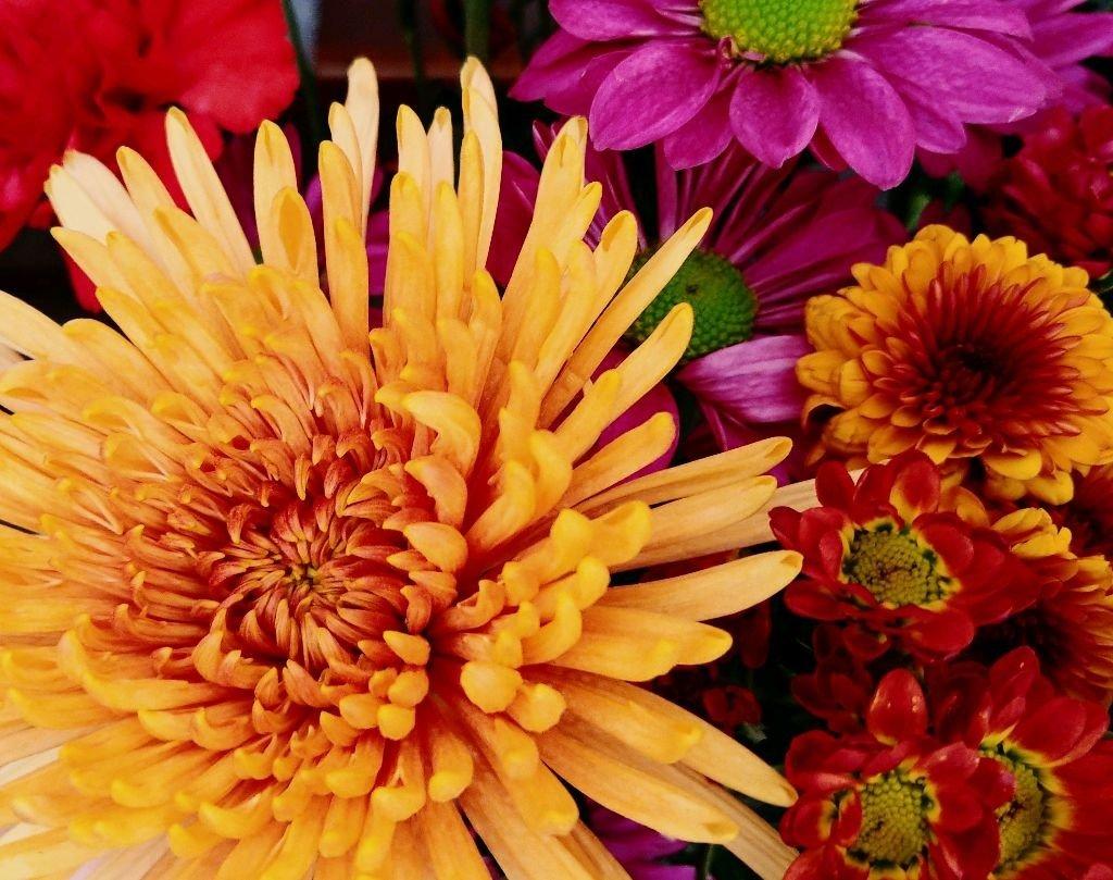 Fall Bouquet by jo38