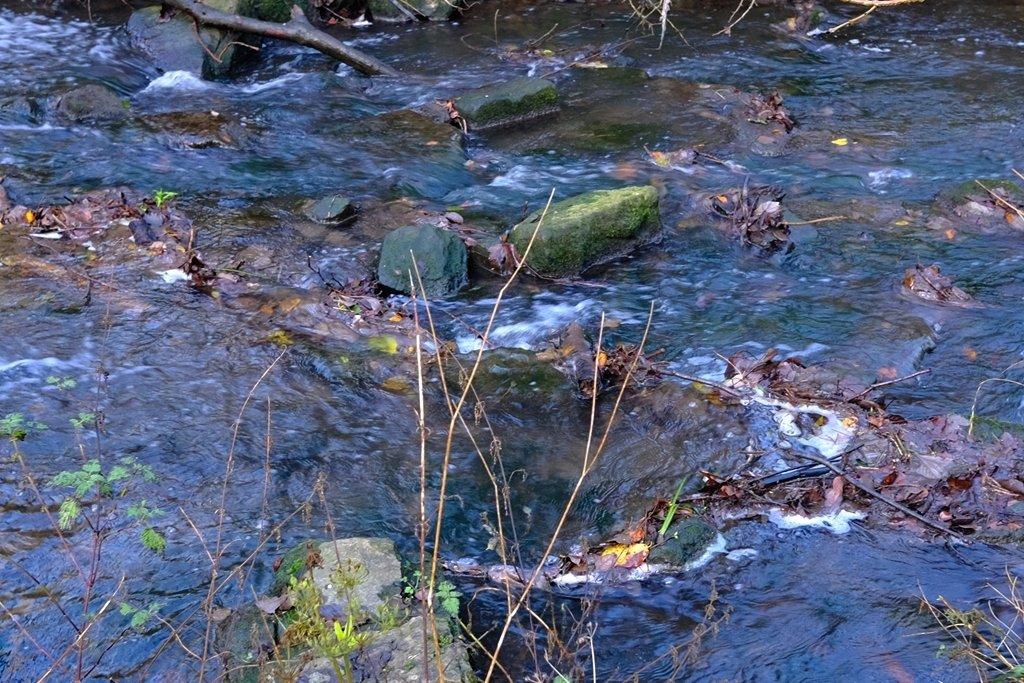 Blue Water by allsop