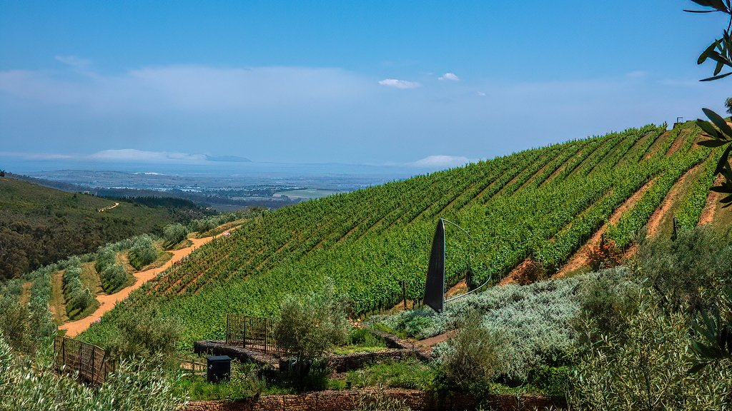 The view from Tokara  by ludwigsdiana