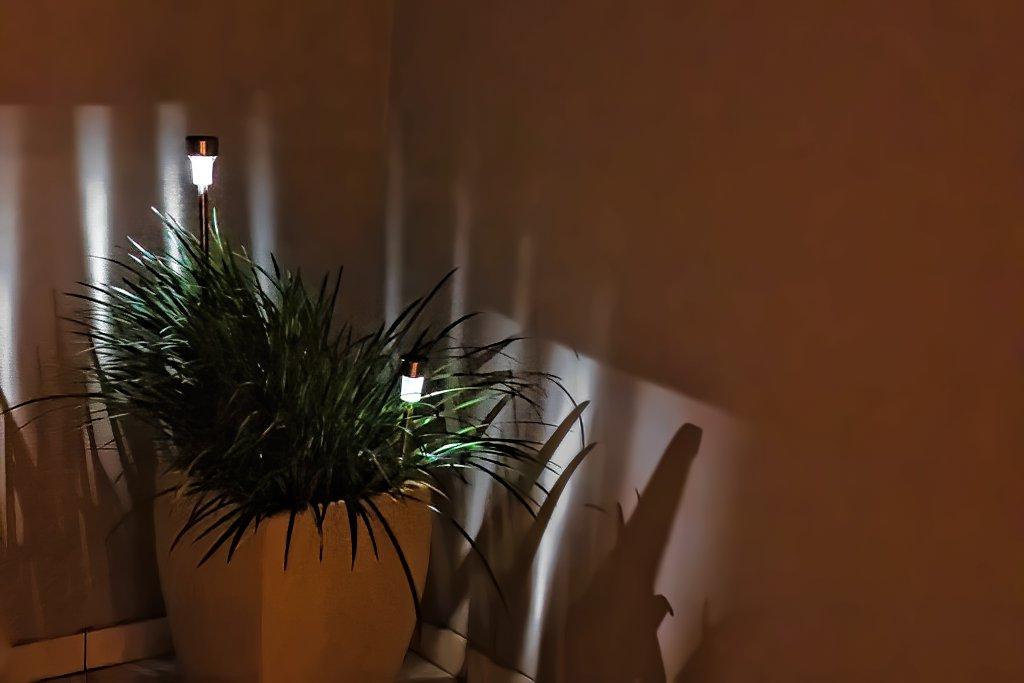 Solar lights by ludwigsdiana