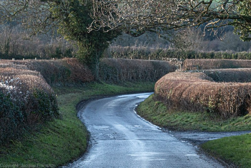 Abbotstone Road by jqf