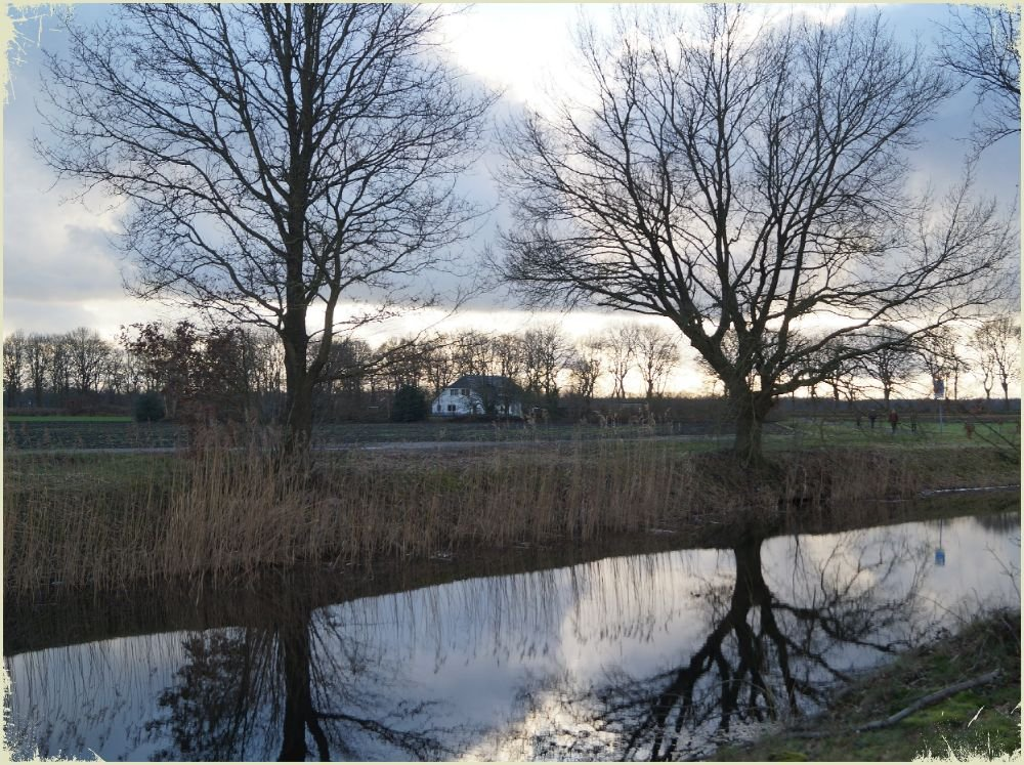 reflections by gijsje